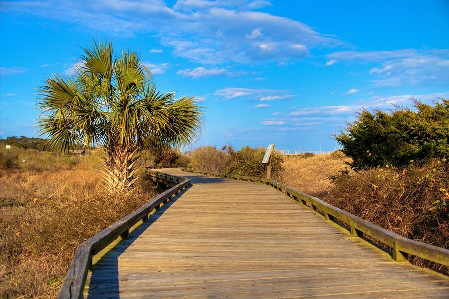 5 Reasons Travel Nurses Should Sign a Contract in South Carolina